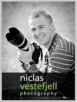 Fotograf i are Niclas Vestefjell photography http---www.niclasvestefjell.se_niclas_250_2px